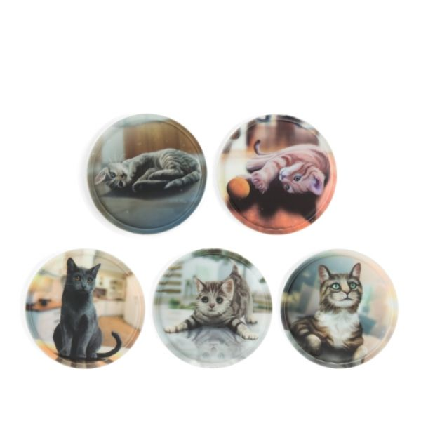 Klettie - Set Katzen 5-teilig