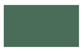 Bildergebnis für dantoy logo