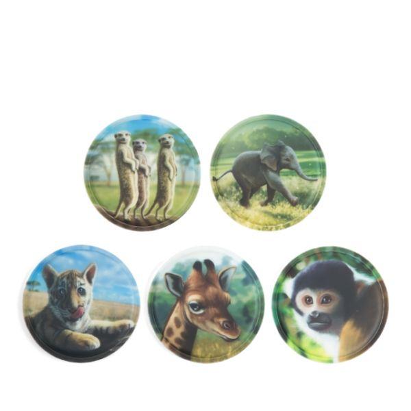 Klettie - Set Zoobabies 5-teilig