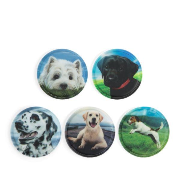 Klettie - Set Hunde 5-teilig