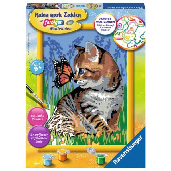 Malen nach Zahlen Katze mit Schmetterling 28.651
